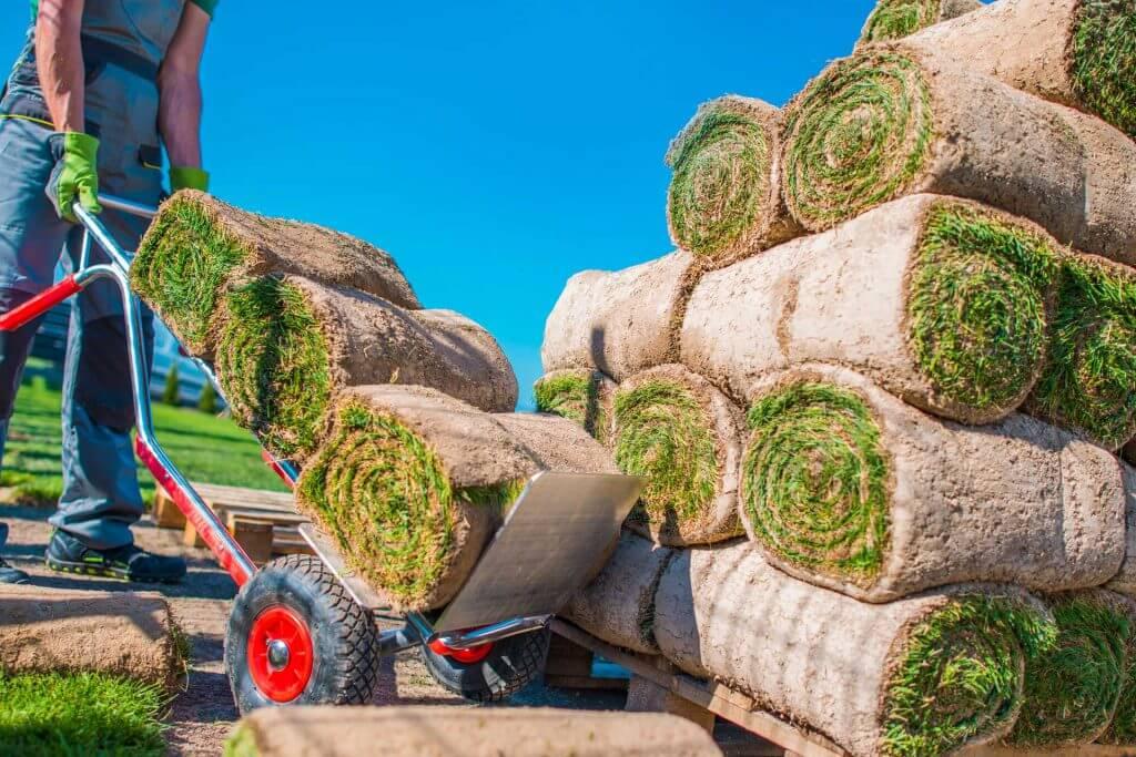 landscaper-grass-instalation-RBL47QT