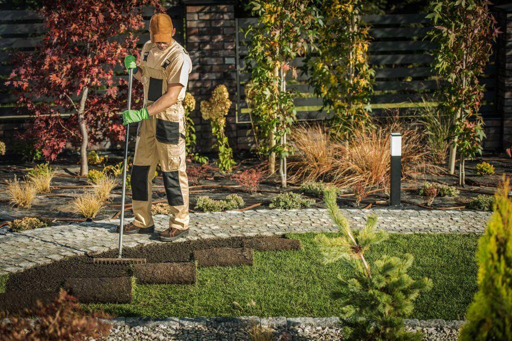 new-garden-grass-turfs-AL3Q8M7